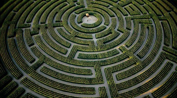 Robicquet Pierre – A l'épreuve du terrain : à propos de la reformulation d'un projet de mémoire sur la psychiatrie
